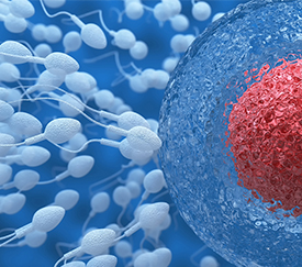 infertility treatment in men