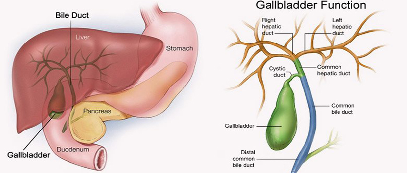gallbladder surgery mumbai india