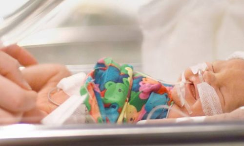 Pediatric Hospitality - Currae